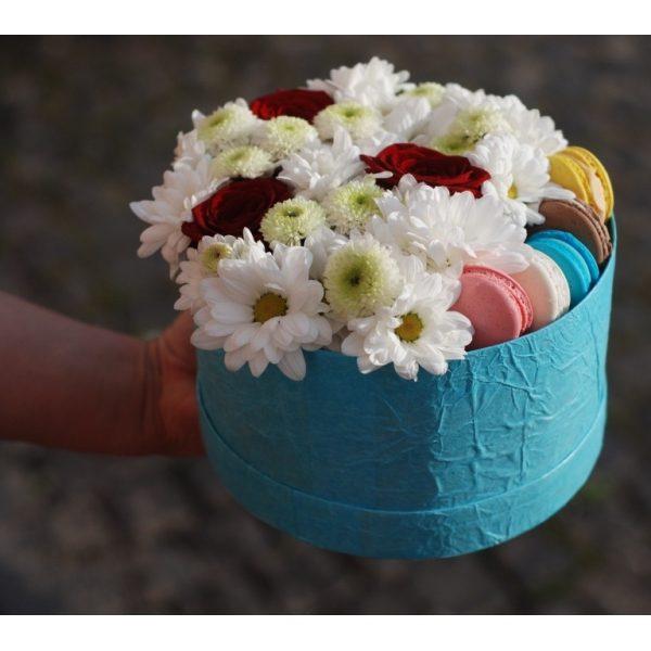 Cолодкі хризантеми