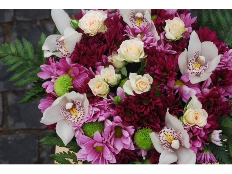 Orchids and chrysanthemums in a box