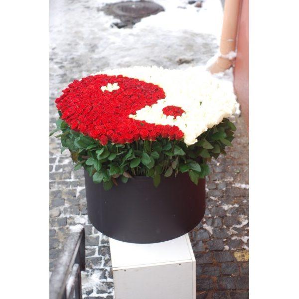 501 троянда