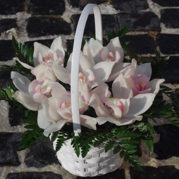 Кошик орхідей
