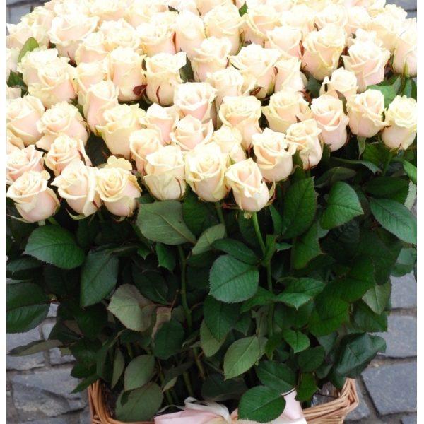 Корзина 101 кремовая роза