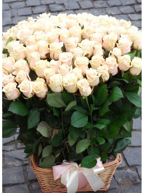Кошик 101 кремова троянда