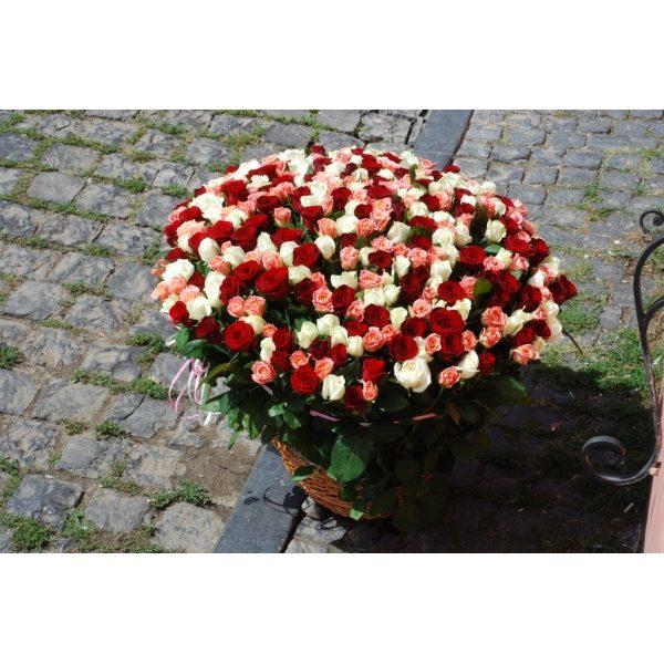 301 троянда