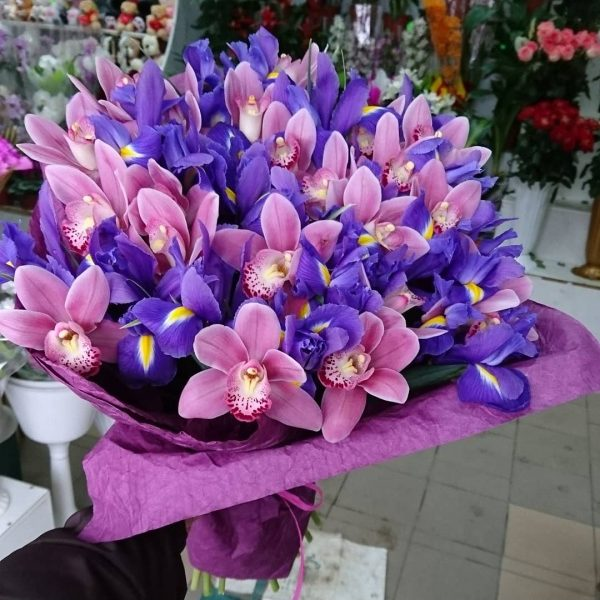 Весняні орхідеї
