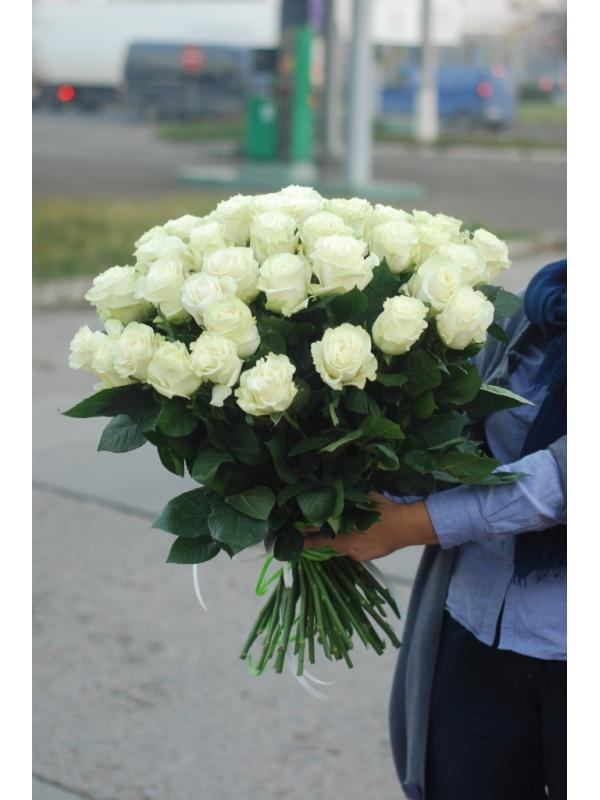 51 троянда Мондіаль