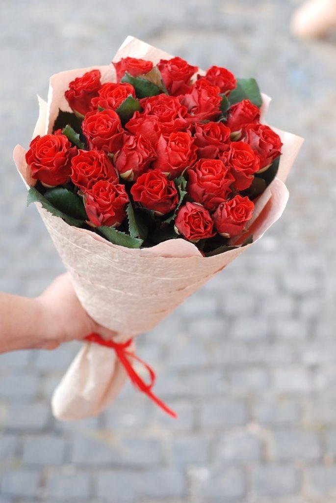 21 El-Toro roses