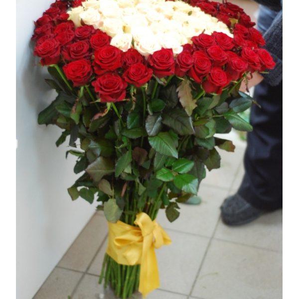 101 кремова і червона троянда