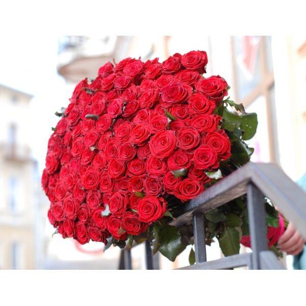 101 червона троянда 60 см
