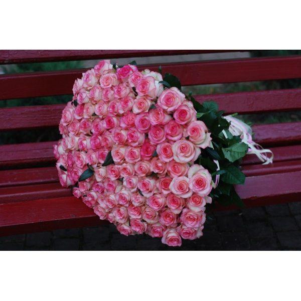 101 троянда Джамілія