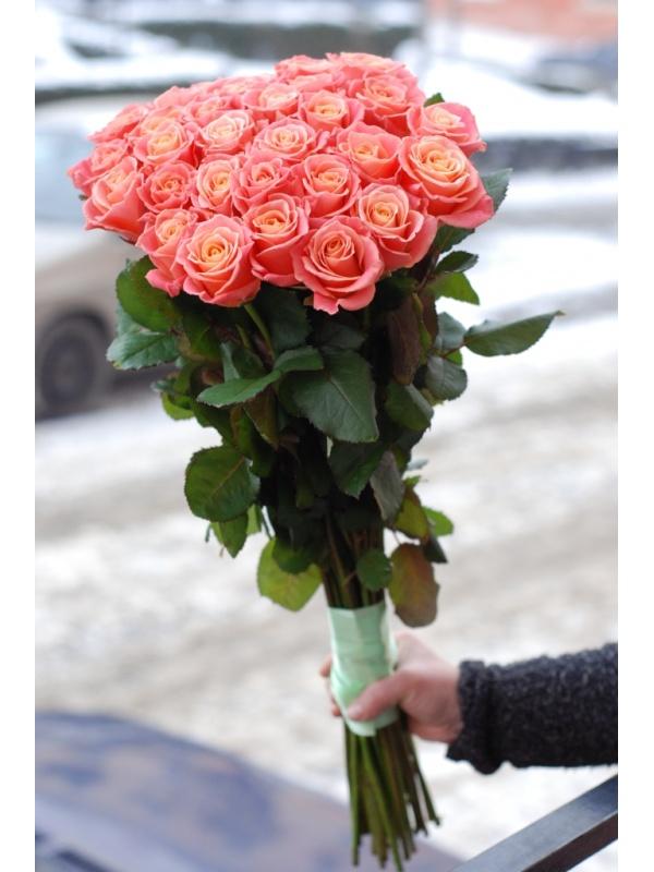 31 троянда місс піггі