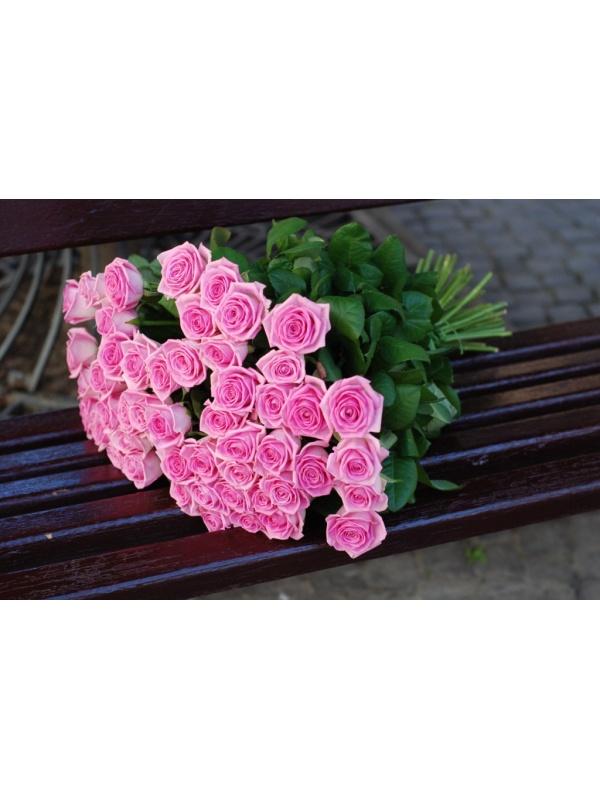 51 троянда